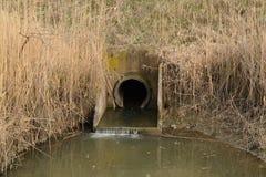 Ingresso fra i canali dell'impianto di irrigazione delle risaie Immagine Stock Libera da Diritti