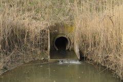 Ingresso fra i canali di risaie dell'impianto di irrigazione Fotografia Stock