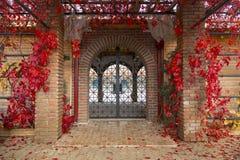 Ingresso incurvato decorativo del ferro attraverso la porta del mattone ad un giardino immagine stock