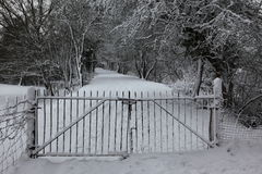 Ingresso in terreno boscoso nevoso Fotografia Stock Libera da Diritti