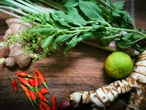 ingridient泰国食物 免版税库存图片