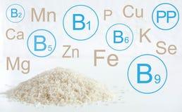Ingridient menselijke voeding Infographic met vitaminen en mineralen in rijstgrutten Illustratie voor een blog met een gezond voe stock illustratie