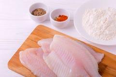 Ingridients para o tilapia fritado dos peixes Faixa crua, fleur, cominhos imagens de stock royalty free