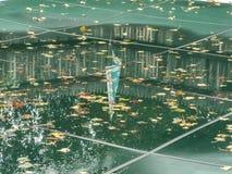 Inground-Pool mit Sicherheitsabdeckung stockbilder