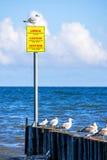 Inguine nel Mar Baltico con la tavola d'avvertimento Immagini Stock Libere da Diritti