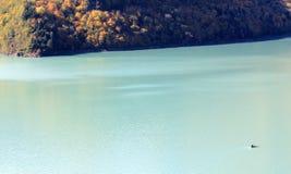 Inguri flod i Georgia Royaltyfri Fotografi