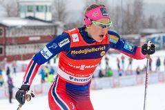 Ingvild Flugstad Østberg 免版税库存照片