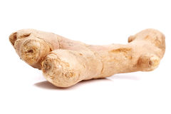 Ingwer - Ginger Royalty Free Stock Photography