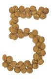 Ingwer-Nuts Zahl fünf stockfoto