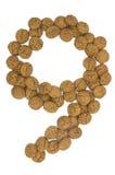 Ingwer-Nuts Zahl neun lizenzfreies stockfoto