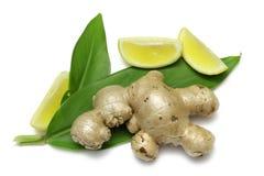 Ingwer und Zitrone Stockfoto