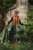 Ingwerkönigin nahe dem Schloss lizenzfreies stockbild