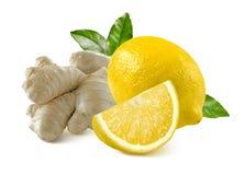Ingwerwurzel und ganzes Viertel der Zitrone lokalisiert auf weißem Hintergrund Lizenzfreies Stockfoto