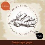 Ingwerwurzelillustration Retro- Hintergrund der Weinlese mit Hand gezeichneter Skizzeningwerwurzel Stockbilder