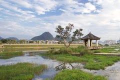 Ingxi ett kinesiskt län med vietnamesisk stil som lokaliseras på gränsen av Kina och Vietnam Arkivfoto
