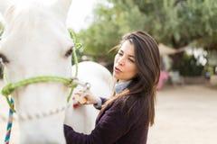 Inhaber, der Aufmerksamkeit zur Pferdehygiene gibt stockfotos