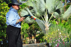 Inhaberbetreiberbetriebsgartenkindertagesstätte, die Bewässerungsanlagen mit einem Schlauch bespritzt lizenzfreies stockbild