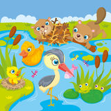 Inhabitants Of Pond And Marshes. Vector illustration of the inhabitants of the pond and marshes - frogs, beavers, ducks and heron Stock Photos