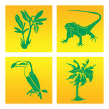The inhabitants of the rainforest in the graphic symbols. The inhabitants of the rainforest in the graphic symbol. Toucan, iguana, banana and coconut palms stock illustration