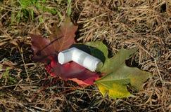 Inhalator, der auf gefallenen Blättern liegt lizenzfreie stockfotografie