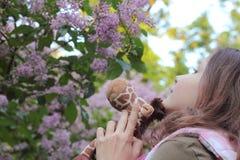 Inhaleer het aroma van seringen royalty-vrije stock foto