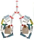 inhaler πνεύμονες Στοκ φωτογραφία με δικαίωμα ελεύθερης χρήσης