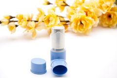 Inhaler with flowering branch Royalty Free Stock Images