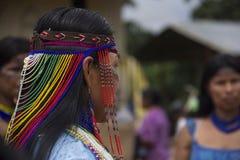 inheems Stock Foto's