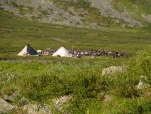 Inheems kamp stock afbeelding