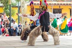 Inheemse dansers van Ecuador royalty-vrije stock fotografie
