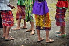 Inheemse kleuren royalty-vrije stock foto