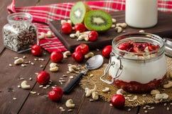 Inhemsk körsbärsröd yoghurt Royaltyfria Bilder