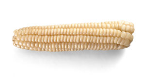 Inhemsk mat Choclo för vit havre som isoleras på vit Arkivfoto