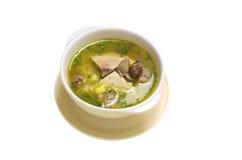inhemsk soup Royaltyfri Fotografi