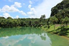 Inhotim ботаническое Gardem, Brumadinho Бразилия Стоковое Изображение RF