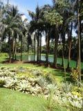 Inhotim botaniska Gardem, Brumadinho Brasilien Arkivfoton