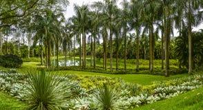 Inhotim Park Stock Photo