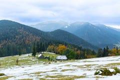 Inhysa den alpina ängen för berget på bakgrunden av bergmaxima och den höstliga skogen Royaltyfri Foto