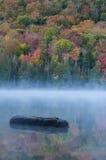 Inicio de sesión flotante un lago tranquilo delante de árboles de la caída Foto de archivo libre de regalías