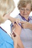 Iniezione antinfluenzale dei maiali Fotografia Stock Libera da Diritti