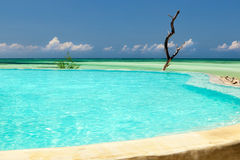 Inifinity pool view. To the Indian ocean, Zanzibar Royalty Free Stock Photo