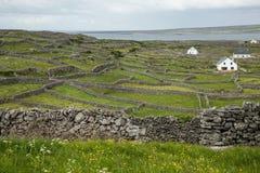 Inisheer, aran海岛,爱尔兰 免版税库存图片