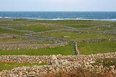 Inishmore, острова Aran Стоковое Фото