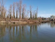 Initialisation d'hiver d'île d'arbres image libre de droits