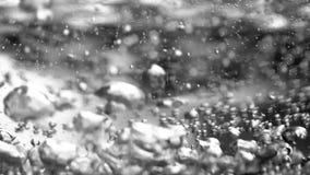 Inizio dell'acqua da bollire Fondo del bollitore elettrico Fine in su archivi video