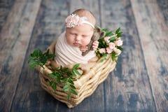 Inizio della vita e del concetto magico leggiadramente felice di infanzia Il neonato sorridente di 10 giorni sta dormendo sul fon fotografie stock libere da diritti