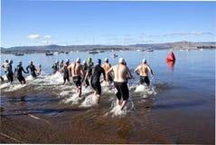 Inizio di Partisipants la gamba di nuoto di un triathlon Fotografia Stock Libera da Diritti
