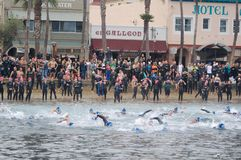 Inizio di un Triathlon Fotografie Stock