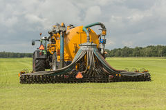 Injecting of liquid manure with tractor and trailer. Agriculture, injecting of liquid manure with tractor and yellow vulture spreader trailer Stock Photo