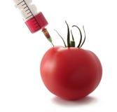 Injection de tomate Images libres de droits